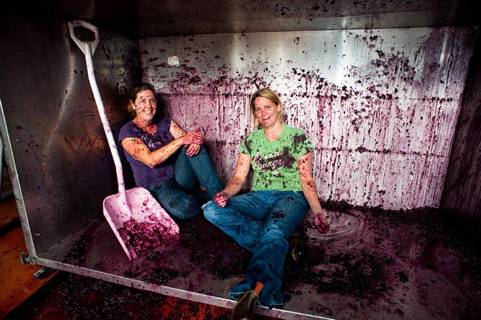 Willson sisters splattered in bin