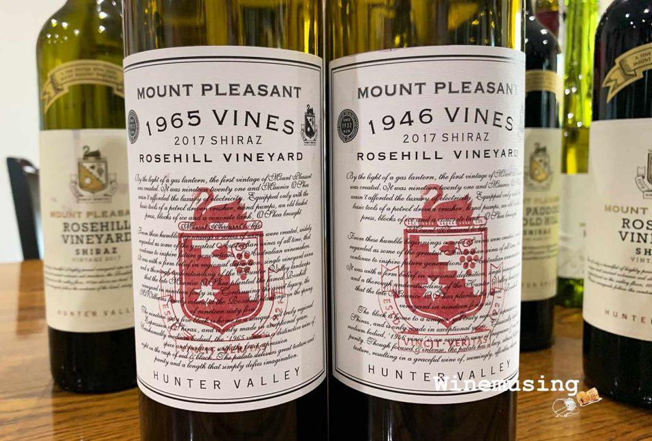 Mount Pleasant Rosehill